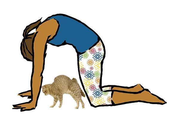 Cat Pose - hướng dẫn tập
