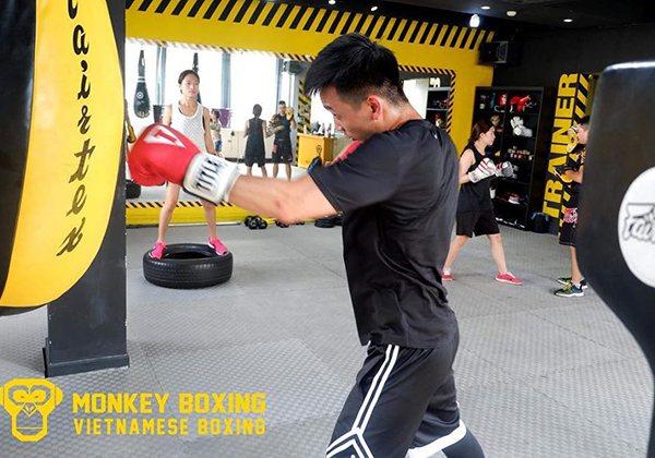 CLB Monkey Boxing