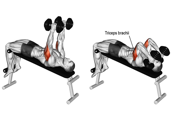 Decline Dumbbell Tricep