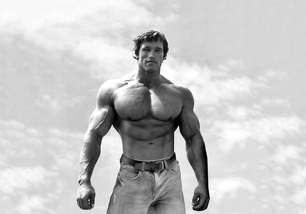 Lịch tập của Arnold Schwarzenegger