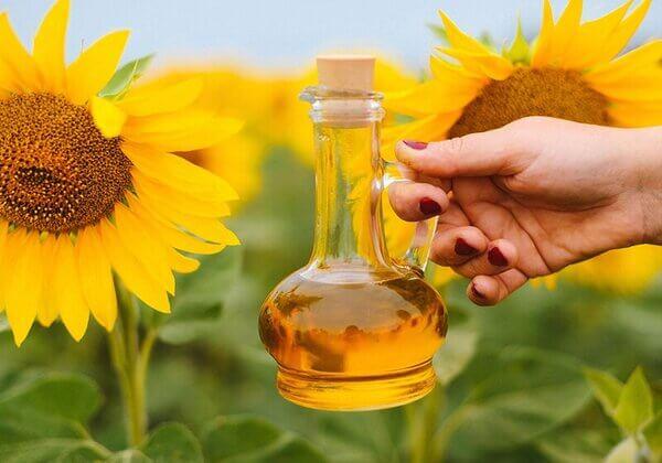 Nên sử dụng Sunflower Lecithin nếu bạn dị ứng với Soy Lecithin từ đậu nành.