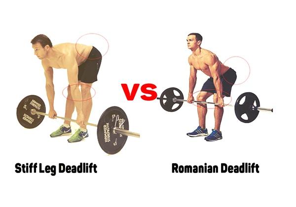 So sánh Romanian Deadlift với Stiff Leg Deadlift