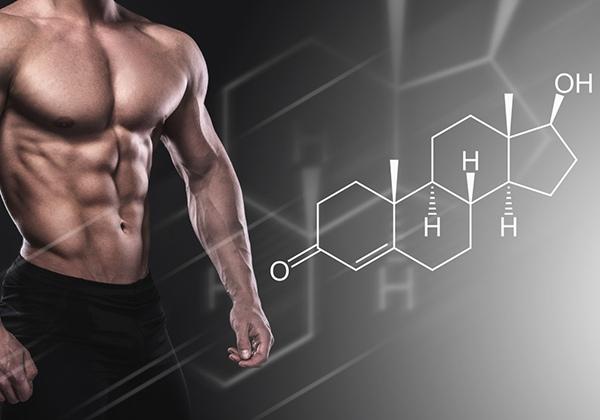 Testosterone là gì? Cách tăng Testosterone tự nhiên cho nam?