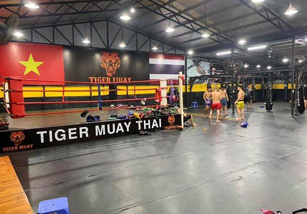 Tiger Muay Camp