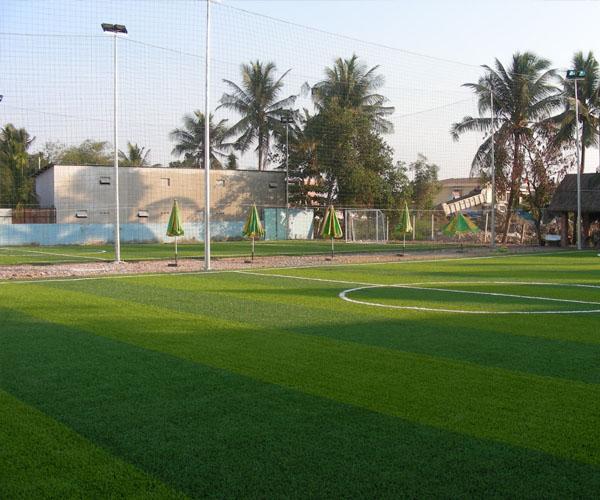 Cỏ nhân tạo Limonta dùng cho thi công sân bóng đá giá rẻ Nhất