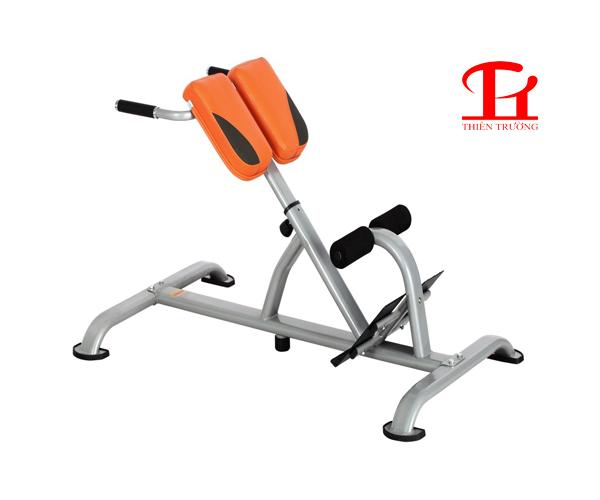 Ghế tập lưng bụng DL 2631 giá rẻ và sử dụng cho phòng Gym !