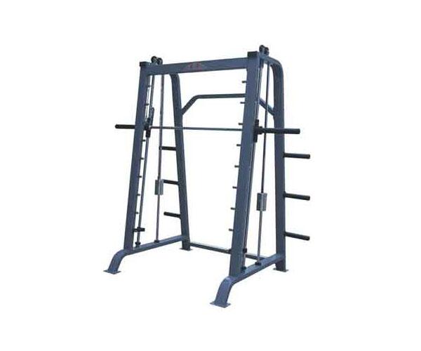 Khung gánh tạ đối trọng G-8620 cho phòng tập Gym giá rẻ Nhất