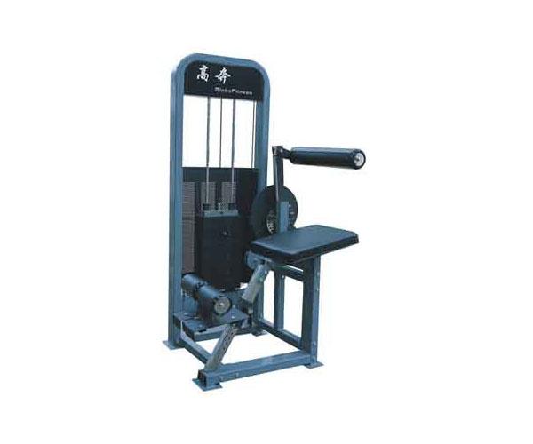 Máy tập bụng eo G - 8616 dùng cho phòng tập Gym giá rẻ Nhất