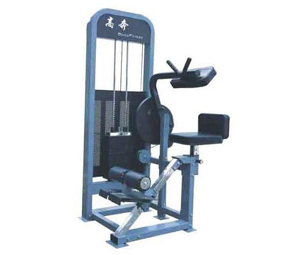 Máy tập lưng bụng G 8602 dành cho phòng thể hình giá rẻ Nhất