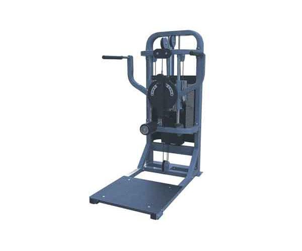 Máy tập lưng hông G - 8623 cho phòng tập Gym và giá rẻ Nhất