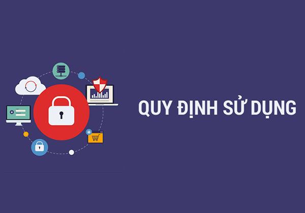 Quy định sử dụng trang web https://www.thethaothientruong.vn/