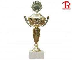 Cúp thể thao vàng 8V0119