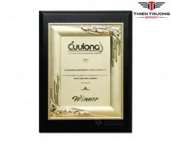 Kỷ niệm chương Luxury 68022025G