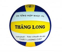 Quả bóng chuyền thi đấu da Nhật VB7400