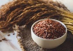 Có nên ăn gạo lứt giảm cân? Thực đơn giảm béo bằng gạo lứt?