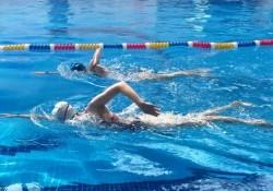 Kiểu bơi nào nhanh nhất? Bơi sải, bơi ngửa, bơi bướm hay ếch