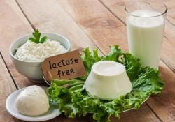 Lactose là gì? Công dụng củaLactose đối với sức khỏe là gì ?