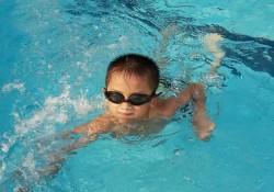 Bơi chó là gì? Hướng dẫn bơi chó đúng cách cho người mới
