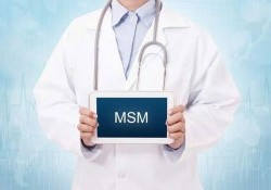 MSM là gì? MSM có tác dụng gì đối với người tập Gym?