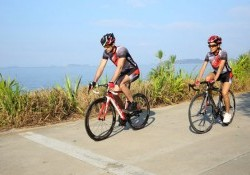 10 Lợi ích của việc đạp xe đối với sức khỏe của bạn