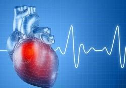 Chỉ số BPM là gì? Nhịp tim của người bình thường là bao nhiêu?