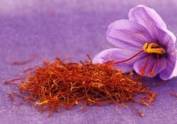 Saffron là gì? Tác dụng của nhụy hoa Nghệ Tây như thế nào?