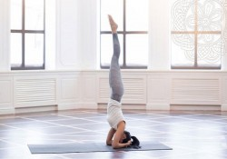 Các tư thế Yoga đẹp được nhiều người yêu thích tập luyện
